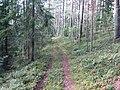 Degučių sen., Lithuania - panoramio (166).jpg