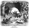 Die Gartenlaube (1865) b 309.jpg