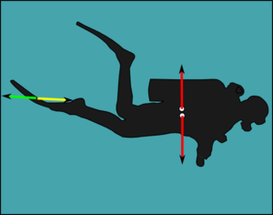 Neutral buoyancy - A neutrally buoyant diver does not need to fin to maintain depth