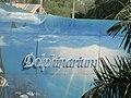 Dolphinarium - panoramio.jpg