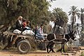 Donkey-drawn cart in Aswan 2019 with a man and three children.jpg