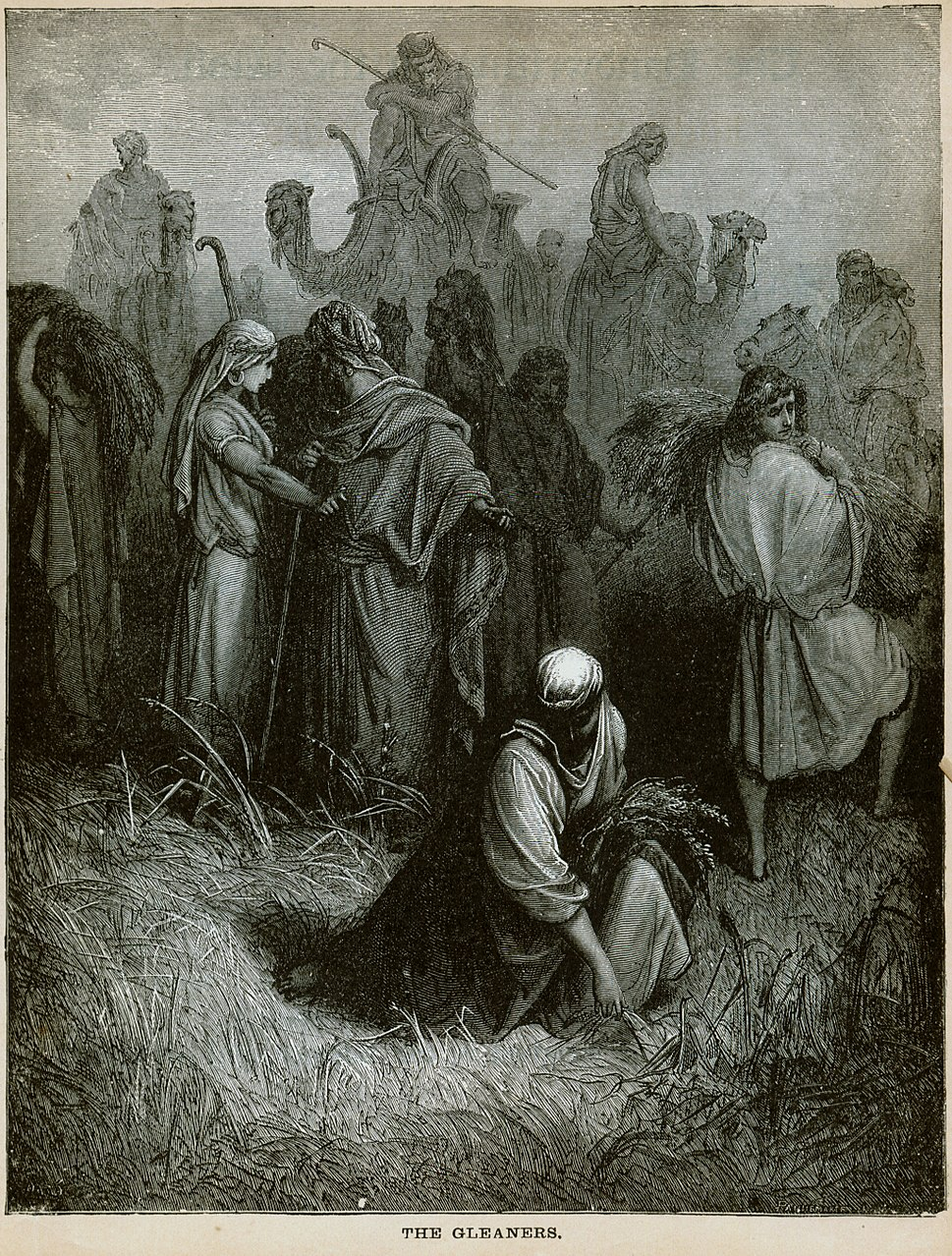 Dore Bible The Gleaners