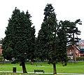 Drumglass Park, Belfast (8) - geograph.org.uk - 708483.jpg