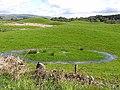 Drumlin landscape - geograph.org.uk - 1327989.jpg