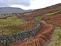 Drystane Dyke and track over moorland - geograph.org.uk - 670121.jpg