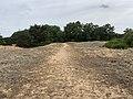 Dunes Charmes Sermoyer 25.jpg