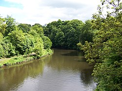 Durham River Wear 2.jpg