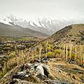 Early morning in Karakorum National Park.jpg
