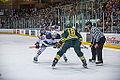 Edmonton Oilers Rookies vs UofA Golden Bears (15275330485).jpg