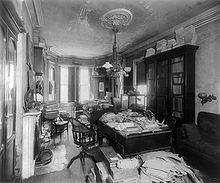 Bright sunlight coming in through windows in the background show a long narrow room with a Victorian fireplace at left, and light fittings (center) hanging from the ceiling. A desk and chair are at center, with the desk piled high with papers, books and specimen boxes. Another desk, partially seen in the foreground, is similarly cluttered, as is a third desk in the background. Two book cabinets, at right and left, are filled, and have more books piled on top of them to the ceiling. An empty sofa is at right.