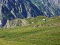 Emparis - ruines du Souchet.jpg
