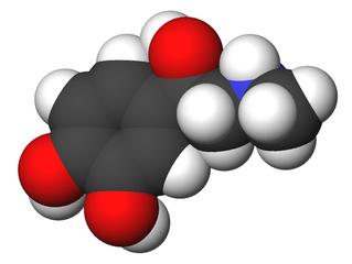 Το μόριο της αδρεναλίνσης σε 3Δ μοντέλο