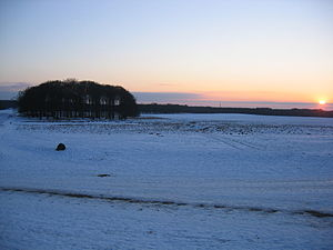 Jægersborg Dyrehave - Eremitagesletten at sunset