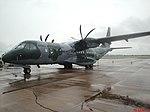 Esquadrilha da Fumaça 60 anos - Pirassununga - 1º-15º GAv - C-105 - Amazonas - panoramio.jpg