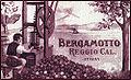 Etichetta 1800 bergamotto reggio calabria.jpg
