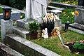 Evangelischer Friedhof Matzleinsdorf - Ev. Friedhof 086.jpg
