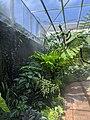 Exotic Plants Botanical Garden.jpg