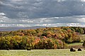 Fall Foliage in Johnstown Region - panoramio (23).jpg