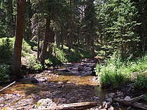 Fall River in RMNP.jpg
