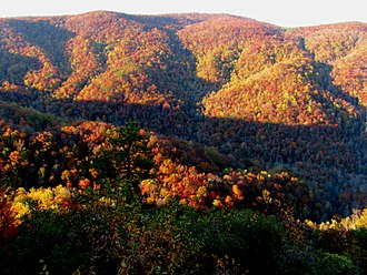 Caesars Head State Park - Fall colors at Caesars Head State Park, Mountain Bridge Wilderness Area.