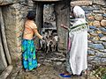 Farm Life, Tigray (8050147988).jpg