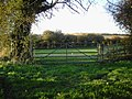 Farm gate opposite Wergs Farm - geograph.org.uk - 82084.jpg