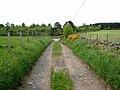 Farm road near Mill of Sessnie - geograph.org.uk - 829071.jpg