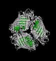 Fenna-Matthews-Olson complex protein trimer (PDB cartoon 4bcl).png
