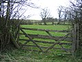Field Gate and Field by the Old Oswestry Racecourse - geograph.org.uk - 395006.jpg