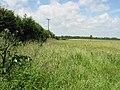 Field boundary from Ferne Lane - geograph.org.uk - 871241.jpg