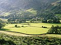 Fields in Great Langdale - geograph.org.uk - 946919.jpg