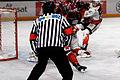 Finale de la coupe de France de Hockey sur glace 2013 - 104.jpg