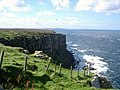Fish Craig, Dunnet Head - geograph.org.uk - 61159.jpg
