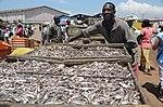 Fishing port of Tema in Ghana (8202282935).jpg