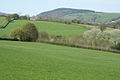 Fitzhead, towards Pitsford Hill - geograph.org.uk - 163714.jpg