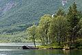 Fjallsjo Nordland Norge.jpg