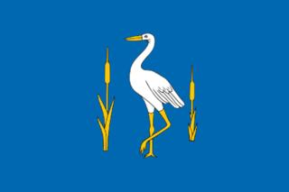 Romanovsky District, Saratov Oblast District in Saratov Oblast, Russia