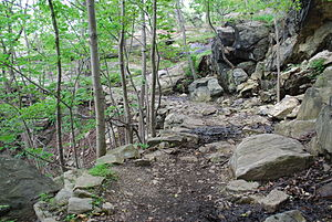 Flirtation Walk (West Point) - Broken terrain on the trail