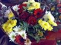 Flower - panoramio - Hosein(hpjoojoo).jpg