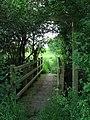Footbridge and path - geograph.org.uk - 832019.jpg