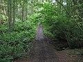 Footbridge in Horse Pasture valley - geograph.org.uk - 1437823.jpg