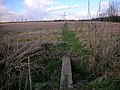 Footpath from Raunds to Denford Ash - geograph.org.uk - 129911.jpg
