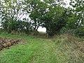 Footpath junction - geograph.org.uk - 993493.jpg