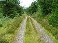 Forest Track in Gleann Udalain - geograph.org.uk - 512205.jpg