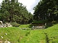 Forest track, Moss of Glanny - geograph.org.uk - 496765.jpg