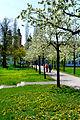 Frühling im Bad Mergentheimer Kurpark. 12.jpg