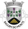 GDM-baguimmonte.png