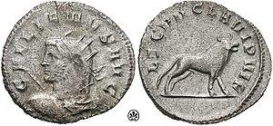 Legio VII Claudia - Gallienus coin, celebrating LEG VII CLA VI P VI F (Seventh legion Claudia, six times faithful, six times loyal, and bearing the bull, symbol of the legion, on the reverse.