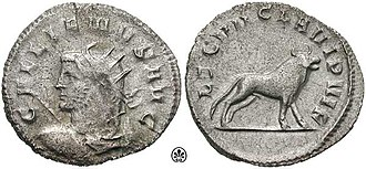 Legio VII Claudia - Gallienus coin, celebrating LEG VII CLA VI P VI F (Seventh legion Claudia, six times faithful, six times loyal, and bearing the bull, symbol of the legion, on the reverse.