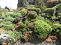 Garden Inside Edinburgh Castle - panoramio.jpg